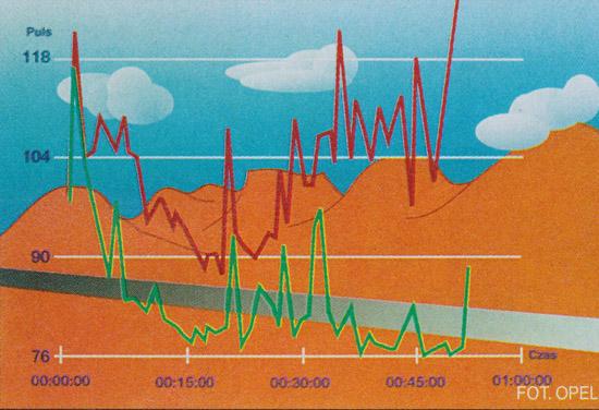 klimatyzacja puls